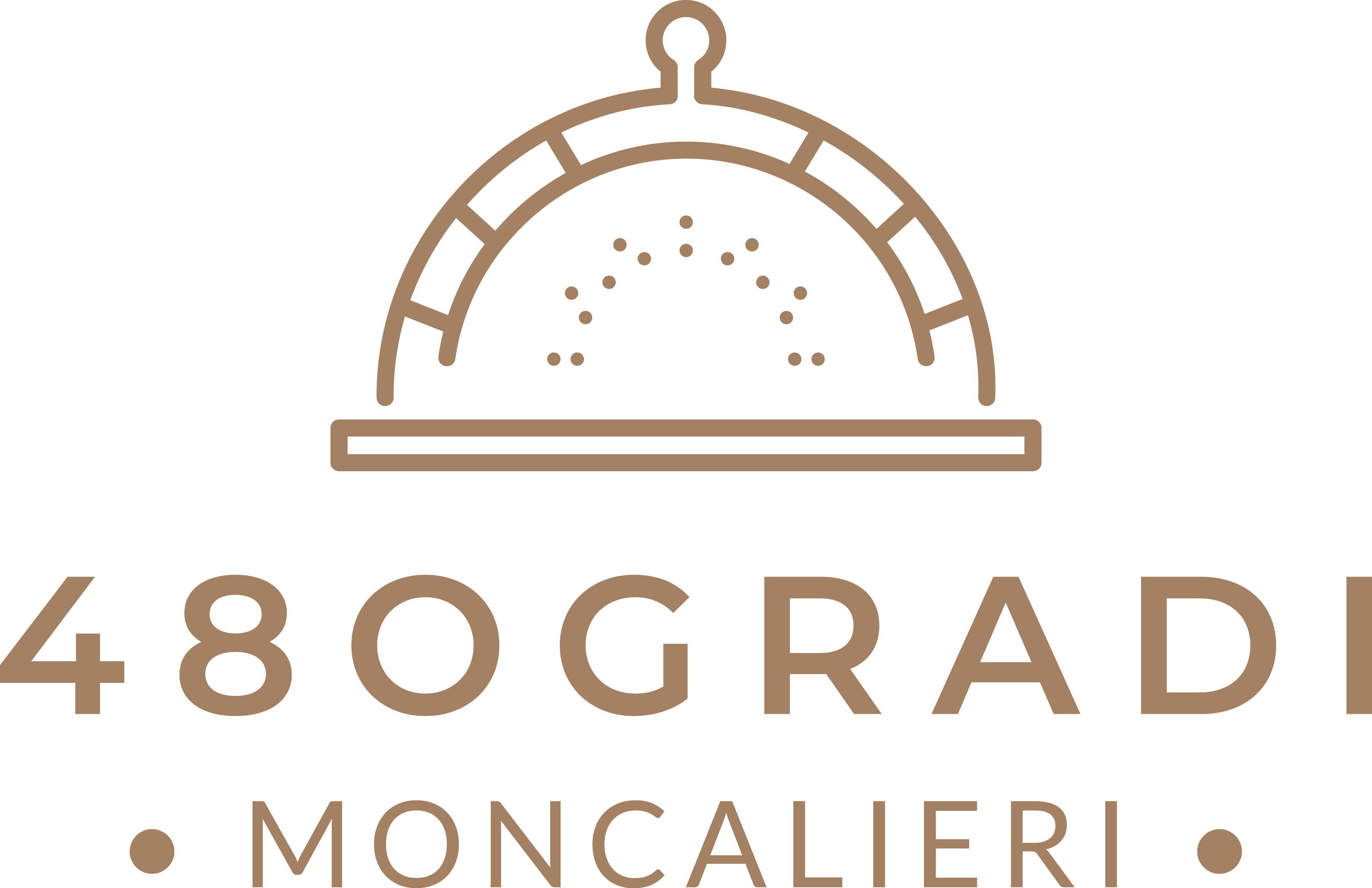 Pizzeria 480GRADI Moncalieri